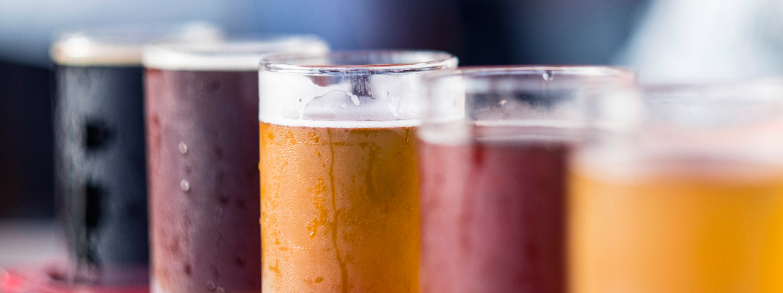 Article Image - Ales Vs. Lagers
